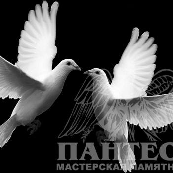 Гравировка пара голубей